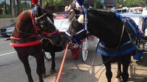 Philadelphia Horse Drawn Carriage Tour, Philadelphia, Custom Private Tours