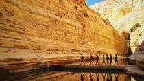 Private Tour: Highlights of the Negev from Tel-Aviv, Tel Aviv, City Tours