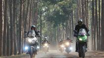 3-Day Doi Angkhang Motorcycle Tour from Chiang Mai, Chiang Mai, Motorcycle Tours