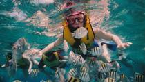 Full-Day Snorkeling Trip to Sharm El Naga from Hurghada, Hurghada, Snorkeling