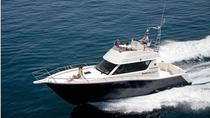 Motor Boat Trip in the Azores, Azores, Sailing Trips
