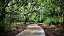 Walnut Creek Bike Tour in Austin, Austin, Bike & Mountain Bike Tours