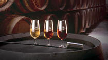 Wine Tasting in Cordoba , Cordoba, Wine Tasting & Winery Tours