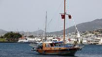 Aegean Sea Boat Trip from Bodrum, Bodrum, Snorkeling
