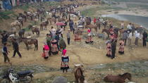Colorful Local Markets of Sapa Tour, Northern Vietnam, Day Trips