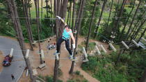 Adrenalin Forest Obstacle Course in the Bay of Plenty, Rotorua, Climbing