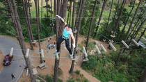 Adrenaline Forest Obstacle Course in Christchurch, Christchurch, Climbing