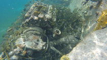 Boat Wreck and Reef Snorkling Eco-Tour, Freeport