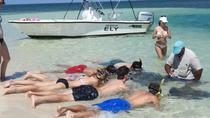 Stingray and Multi-Reef Snorkeling Eco-Tour, Freeport, Eco Tours