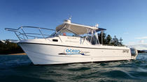 Private Half-Day or Full Day Hamilton Island or Airlie Beach Charter, Airlie Beach