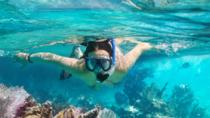 Snorkeling trip, Muscat, Day Cruises