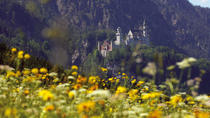 Private Day Tour from Fussen: Neuschwanstein Castle, Oberammergau and Linderhof Castle, ...