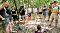 Cu Chi Tunnels Half Day Tour, Ho Chi Minh City, Half-day Tours