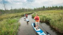 Algonquin Park Adventure Lodge 3- or 4-Day Trip, オタワ