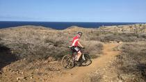 Advanced and Extreme Customized Mountain Bike around the Island 75km, Aruba, Bike & Mountain Bike ...