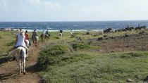 Aruba Horseback Riding Tour to Hidden Lagoon, Aruba, Horseback Riding
