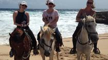 Aruba Horseback Riding Tour to Urirama Cove, Aruba, Horseback Riding