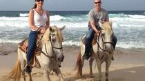Aruba WARIRURI Natural Bridge 3 hrs Horseback Riding For Advanced Riders, Aruba, Horseback Riding