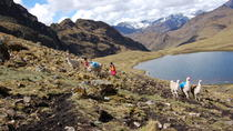 Lares Trek to Machu Picchu in 4 Days, Cusco, Hiking & Camping