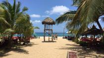 Riviera Nayarit Highlights Tour Including San Pancho and Sayulita, プエルトバラータ