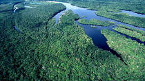 Complete Amazon Rainforest experience with Jungle Lodge (05 days and 04 nights), Manaus, Multi-day ...