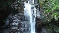 Horto Waterfalls Circuit Adventure Tour in Tijuca National Park, Rio de Janeiro, Hiking & Camping