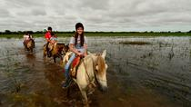 Pantanal Experience (3 days - 2 nights), Cuiabá, Multi-day Tours