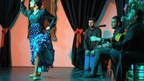 Authentic flamenco in Granada, Granada, Flamenco