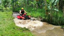 ATV Quad and Tanah Lot Temple Tour, Kuta, 4WD, ATV & Off-Road Tours
