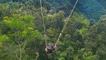 Bali Volcano kintamani and Ubud full-day tour, Kuta, Full-day Tours
