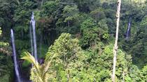 Private Tour: Jatiluwih Rice Terrace and Munduk Waterfall Tour, Kuta, Dolphin & Whale Watching