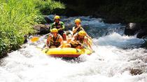 White Water Rafting and Coffee Plantation Tour in Bali, Bali, Plantation Tours