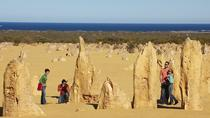Pinnacles Day Trip da Perth tra cui il Caversham Wildlife Park e il Lancelin Dunes Sandboarding, ...