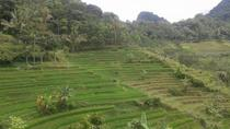 Private Tour: Full-Day Java Village Tour, Central Java, Private Sightseeing Tours