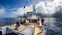 Niihau and Na Pali Coast Kauai Snorkel Cruise with Optional Scuba, Kauai, Kayaking & Canoeing