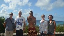Half-Day Cultural Tour of Moorea Including Opunohu Bay