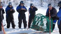 Full-Day Trip: King Crab Safari to Norway from Saariselkä Including Lunch, Lapland, Day Trips