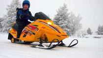 Lapland Family Snowmobile Safari From Rovaniemi, Rovaniemi