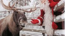 Lapland Ranua Zoo Guided Trip from Rovaniemi with Hotel Transport, Rovaniemi, Attraction Tickets