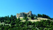 Half Day Tour of Jerash and Ajloun, Amman, Private Sightseeing Tours