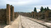 Independent Pompeii, Herculaneum and Mt Vesuvius Visit from Naples, Naples, Full-day Tours