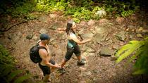 El Yunque Rainforest Adventure - FULL DAY - From San Juan