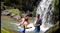 El Yunque Rainforest Adventure - FULL DAY - From San Juan, San Juan, Full-day Tours