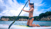 Paddle Board or Kayak Tour from San Juan, San Juan, Stand Up Paddleboarding