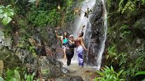 Small-Group El Yunque Rainforest Day Trip from San Juan, San Juan, Full-day Tours