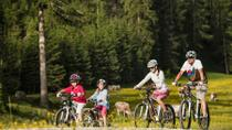 Guided Bike Tour to Mount Postavaru from Brasov, Brasov, Bike & Mountain Bike Tours