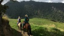 10 Day Los Llanos Adventure Colombia, Bogotá, 4WD, ATV & Off-Road Tours