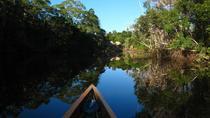 4-Day Trip: Cuyabeno Amazon Experience, Amazon, Multi-day Tours