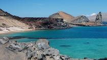 5-Day Galapagos Island Hopping Tour, Galapagos Islands, Multi-day Tours