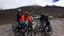 Full-Day Hike and Bike Cotopaxi National Park from Quito, キト